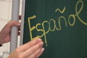 The Spanish Language (Reading)